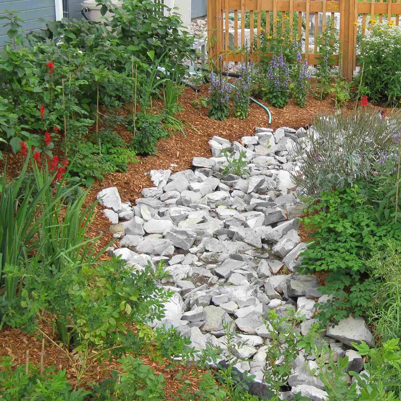Archetype sustainable house rain garden