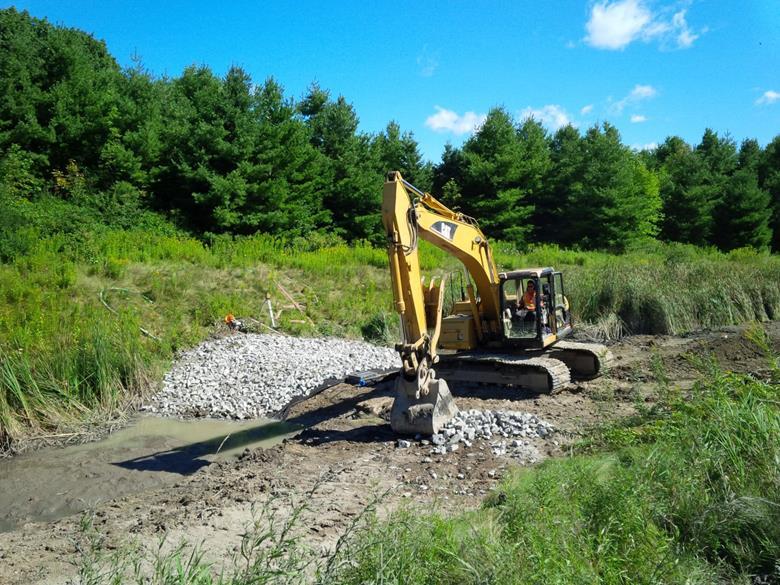 Check dam construction