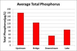 Average Total Phosphorus