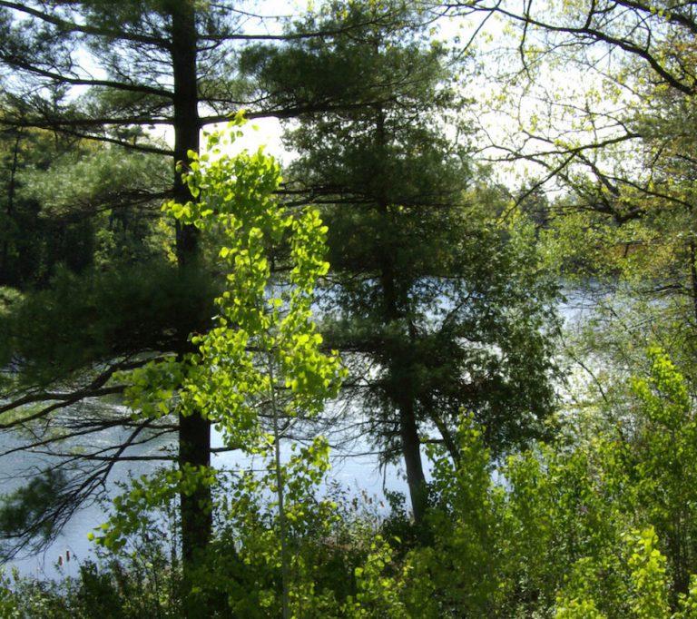Oak Ridges Corridor Conservation Reserve