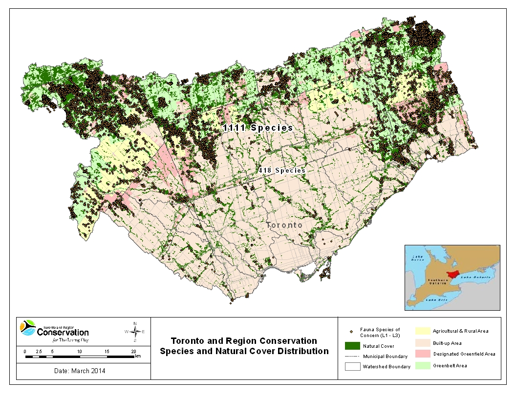 TRCA terrestrial monitoring species and natural cover distribution map