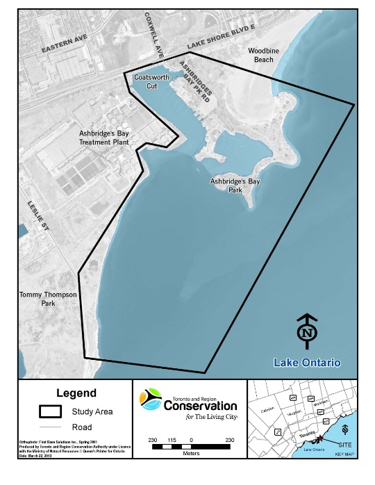Map of Ashbridges Bay study area