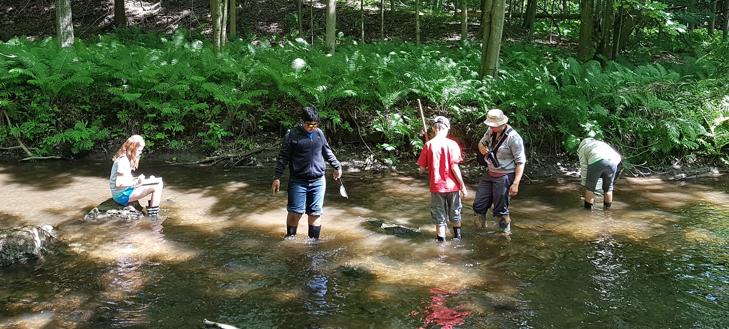 students conduct stream study at Albion Hills Field Centre