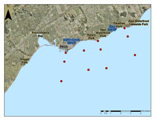 Lake Ontario Waterfront nearshore monitoring water quality patterns