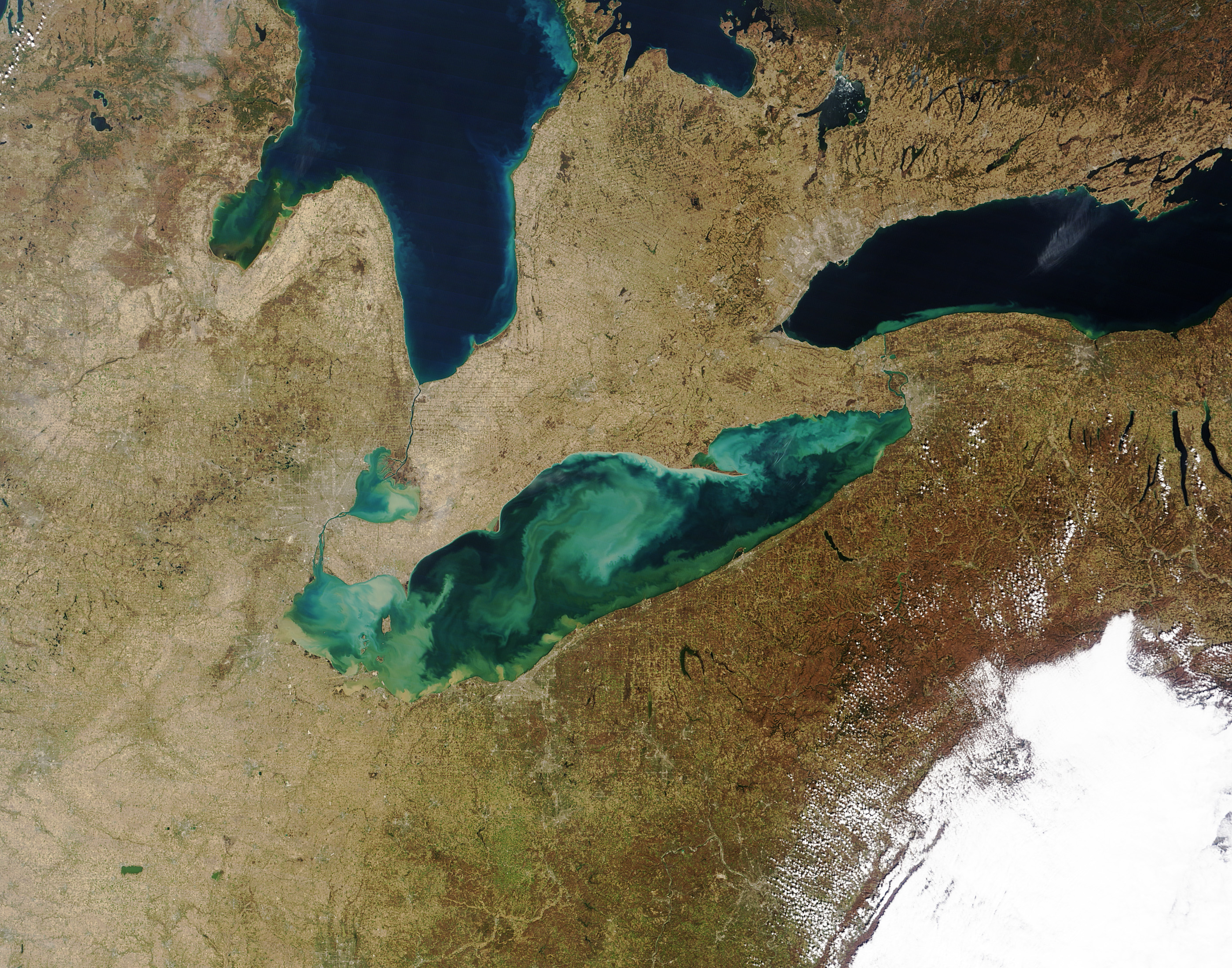 An example of algal blooms in Lake Erie, and along some of the shores of Lake Huron and Lake Ontario. Image credit: NASA image by Jeff Schmaltz, LANCE/EOSDIS MODIS Rapid Response; Visible Earth March 21, 2012