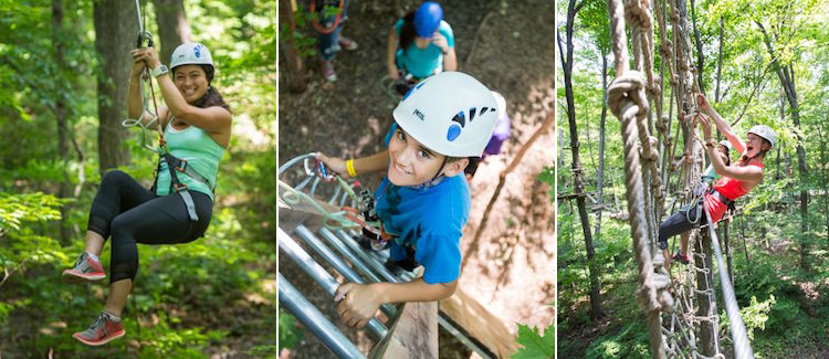 Treetop Trekking at Bruce's Mill Conservation Park
