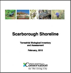 Scarborough Shoreline Report cover