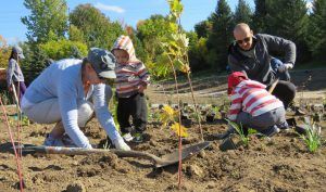 Caledon Wellness Fall Planting Event @ Caledon Centre for Recreation and Wellness
