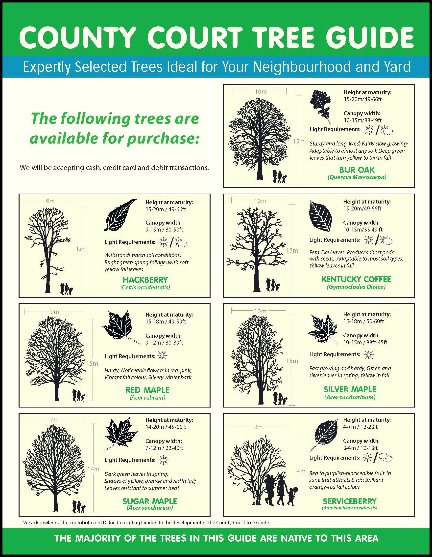 County Court tree guide