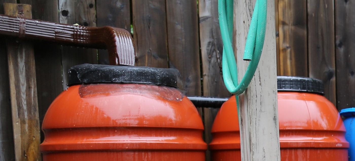 rain barrels in a backyard