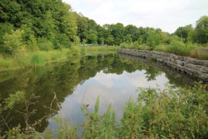 MECP's Stormwater Consolidated Permissions Framework @ Online Webinar