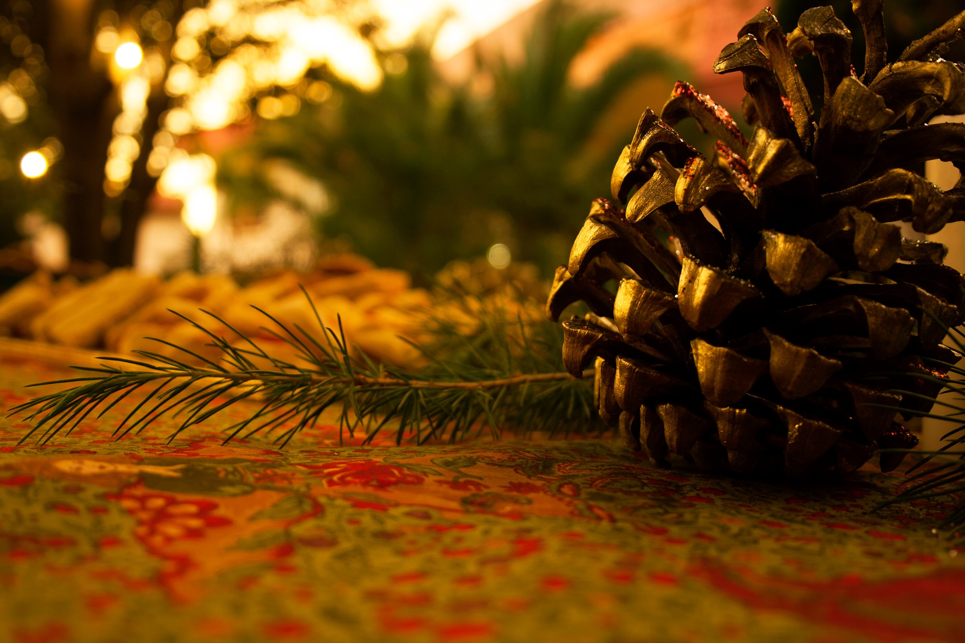 Christmas Forest.Christmas Events And Things To Do Toronto And Region