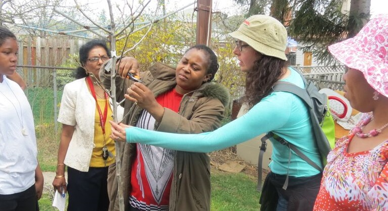 Black Creek SNAP residents take part in fruit tree care program