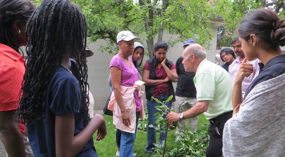urban agriculture skills sharing in the Black Creek SNAP community