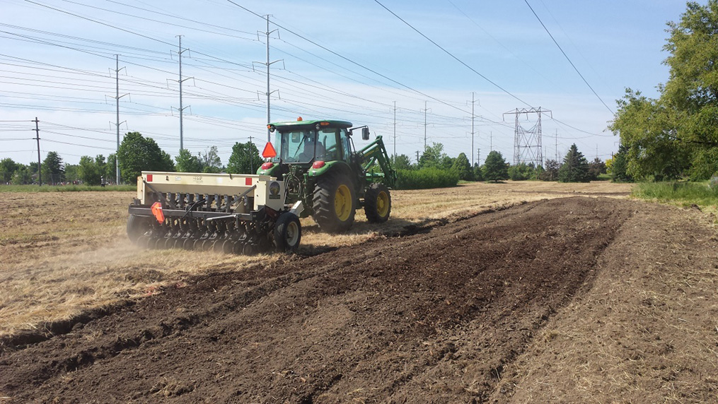 TRCA workers seed meadow