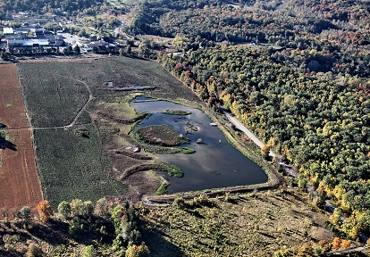 aerial view of a Toronto area wetland