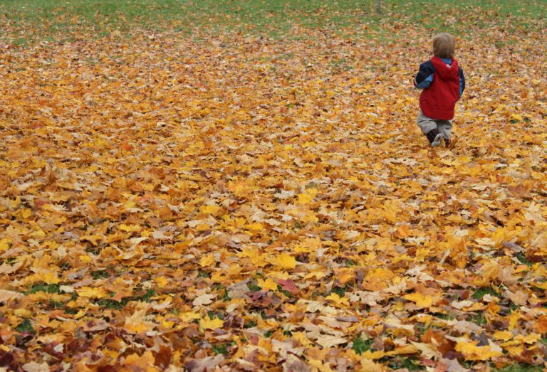 Fall, autumn colours with child