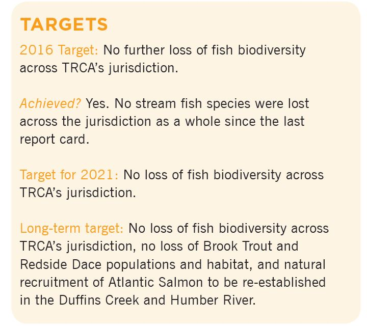 Living City Report Card fish targets