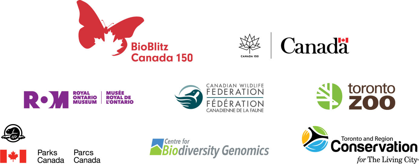 logos of Rouge Bioblitz partner organizations