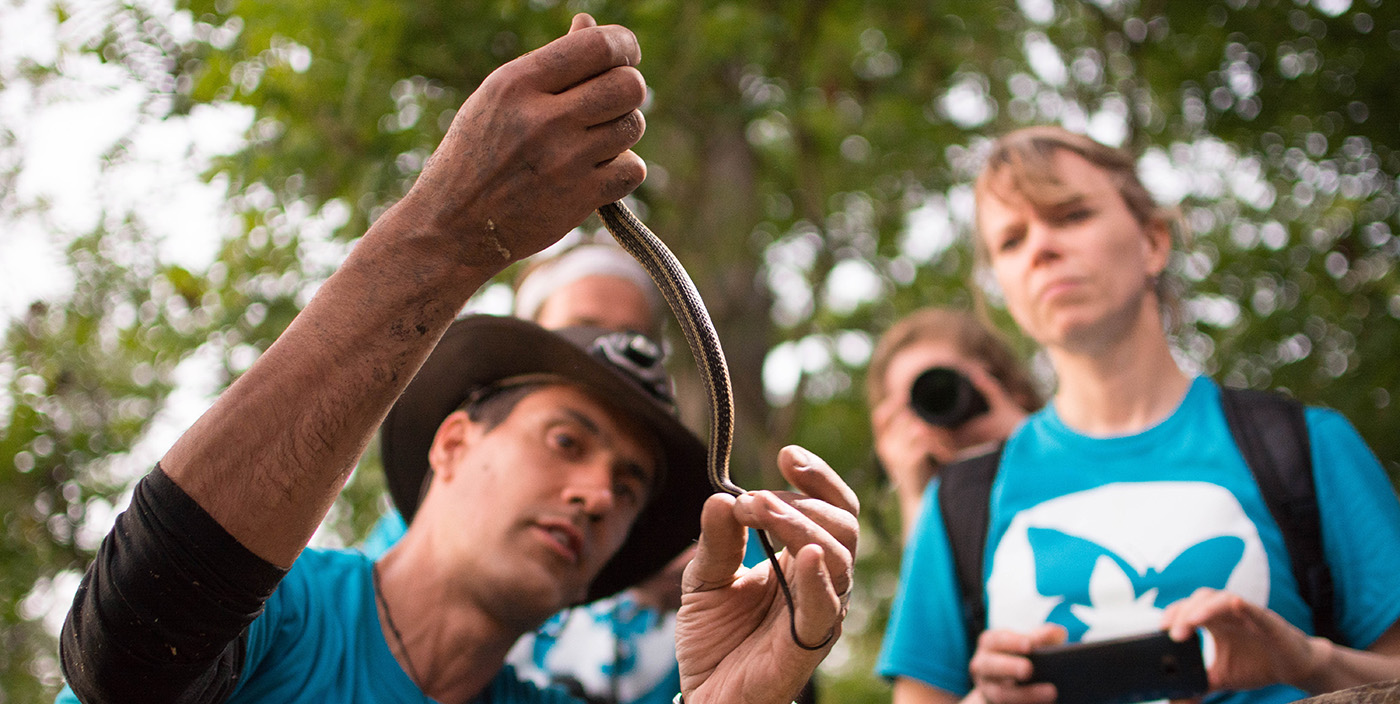 bioblitz participants examine a snake