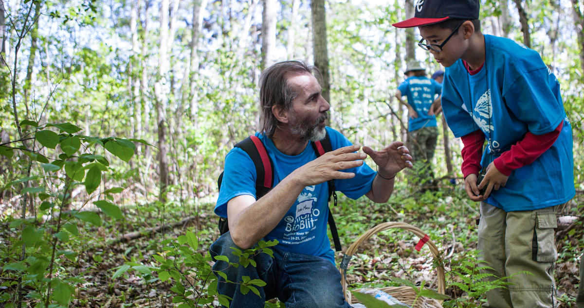 Toronto residents take part in a bioblitz at Rouge Park