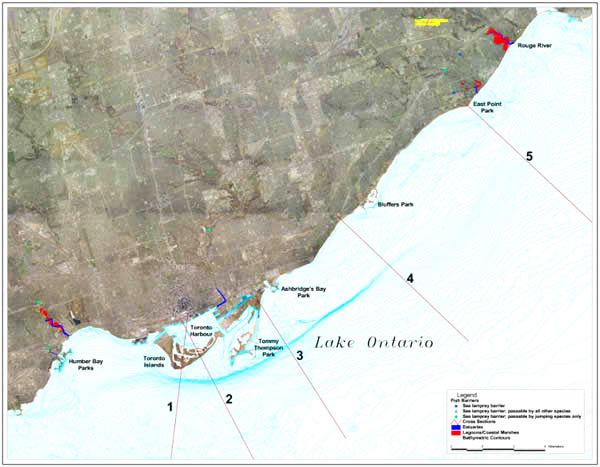 map of Toronto Waterfront shoreline profiles