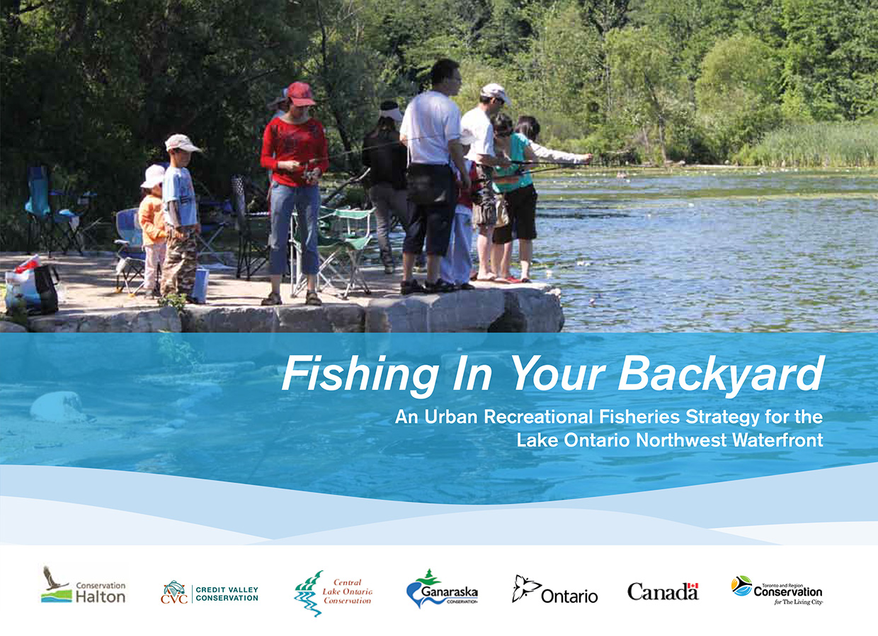 cover page of Fishing in Your Backyard strategy