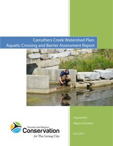 Carruthers Creek Watershed Plan, Aquatic Barriers