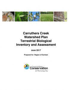 Carruthers Creek Terrestrial 2017
