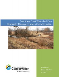 Carruthers Creek Watershed Plan: Headwater Drainag
