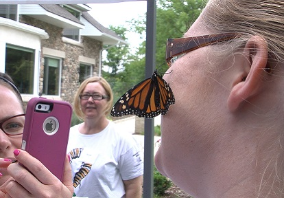 woman with monarch butterfly on cheek