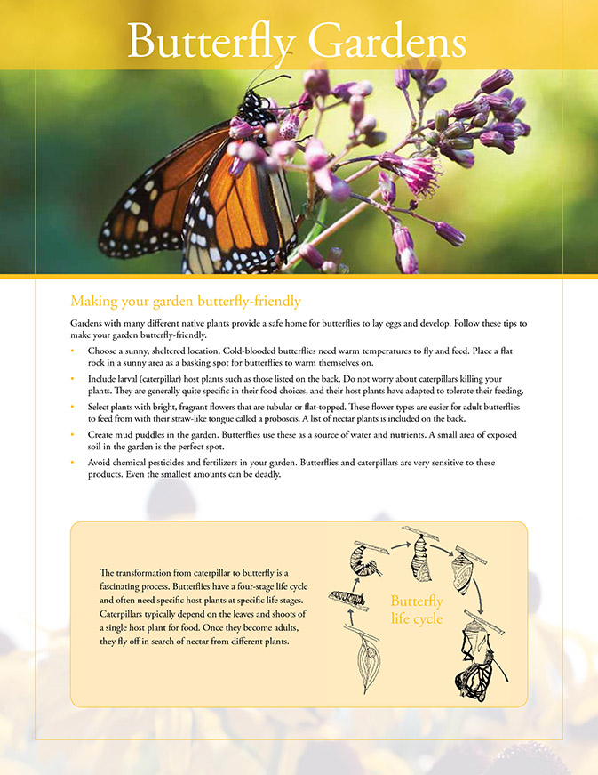 butterfly gardens resource sheet