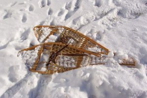 Snowshoes and Snow-Clues @ Claireville Conservation Area