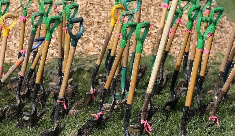 Shovels in the ground for planting
