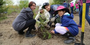 Spring Tree Planting at Oak Ridges CC @ Oak Ridges Community Centre