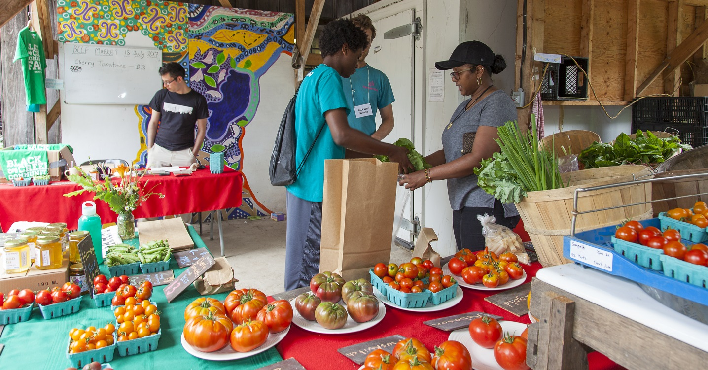 farmers display fresh produce at Black Creek Community Farm
