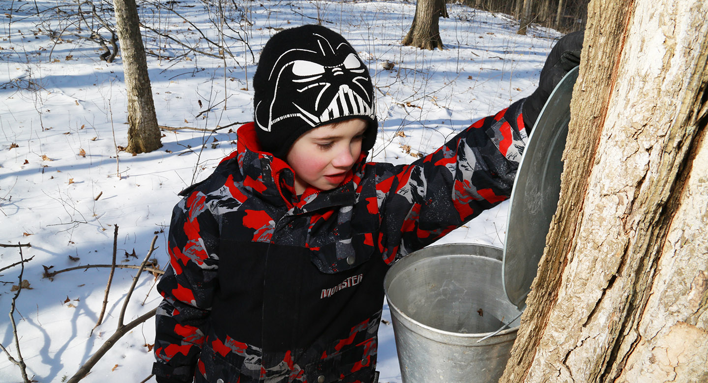 young boy at Sugarbush Maple Syrup Festival