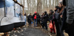 Workshop: Maple Syrup – From Tap to Table @ Kortright Centre for Conservation