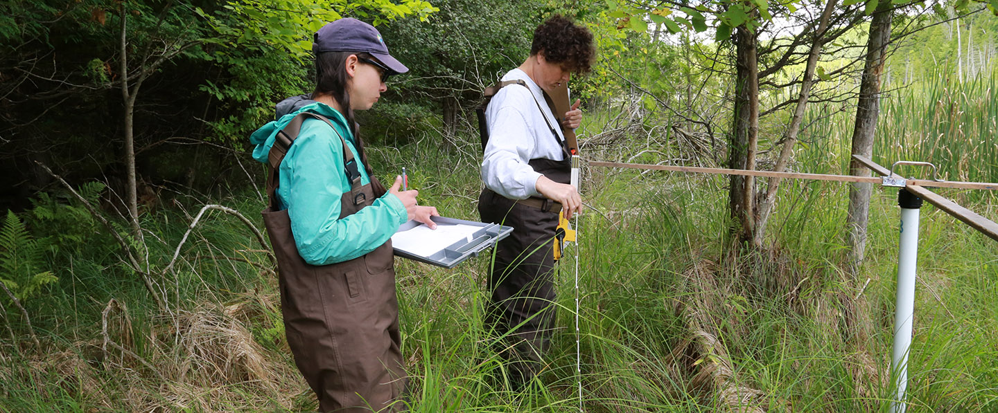 students take part in environmental field training
