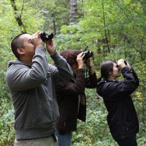 POSTPONED: All About Birds @ Oak Ridges Community Centre