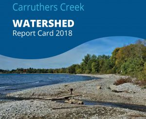 TRCA Carruthers Creek watershed report card