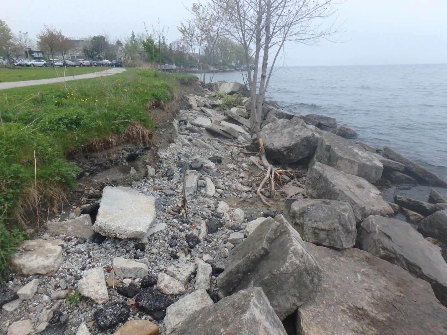 Scouring behind length of structure, putting park trail at-risk from erosion. Source: TRCA, 2018.