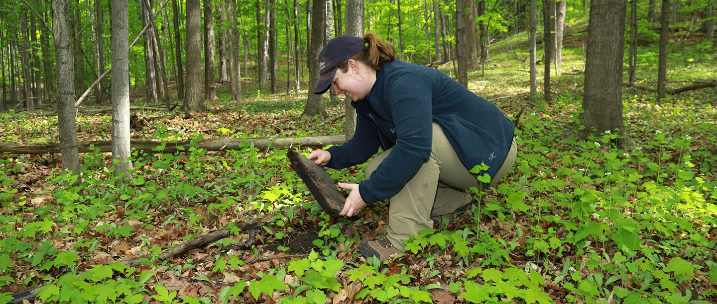 TRCA environmental monitoring team tracks endangered species in the field