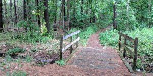 Urban Forest Walk @ Pomona Mills Park | Markham | Ontario | Canada