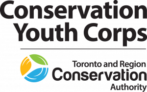 Peel Region: Conservation Youth Corps - July 29 to Aug 2 @ Various locations in Peel Region