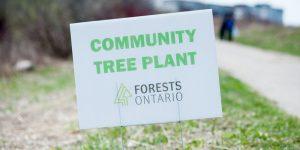 Community Tree Plant - Brampton @ Claireville Conservation Area | Brampton | Ontario | Canada