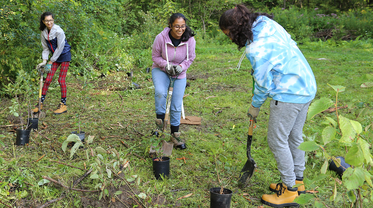 high school girls at planting event