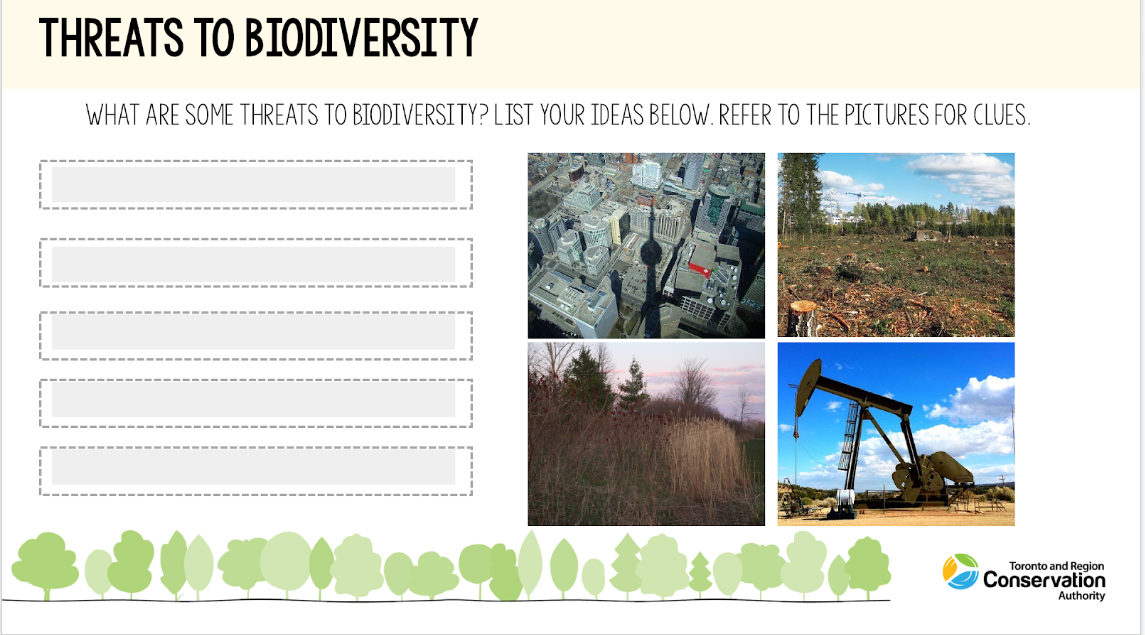 cover page of TRCA Watershed on Wheels biodiversity e-learning resource