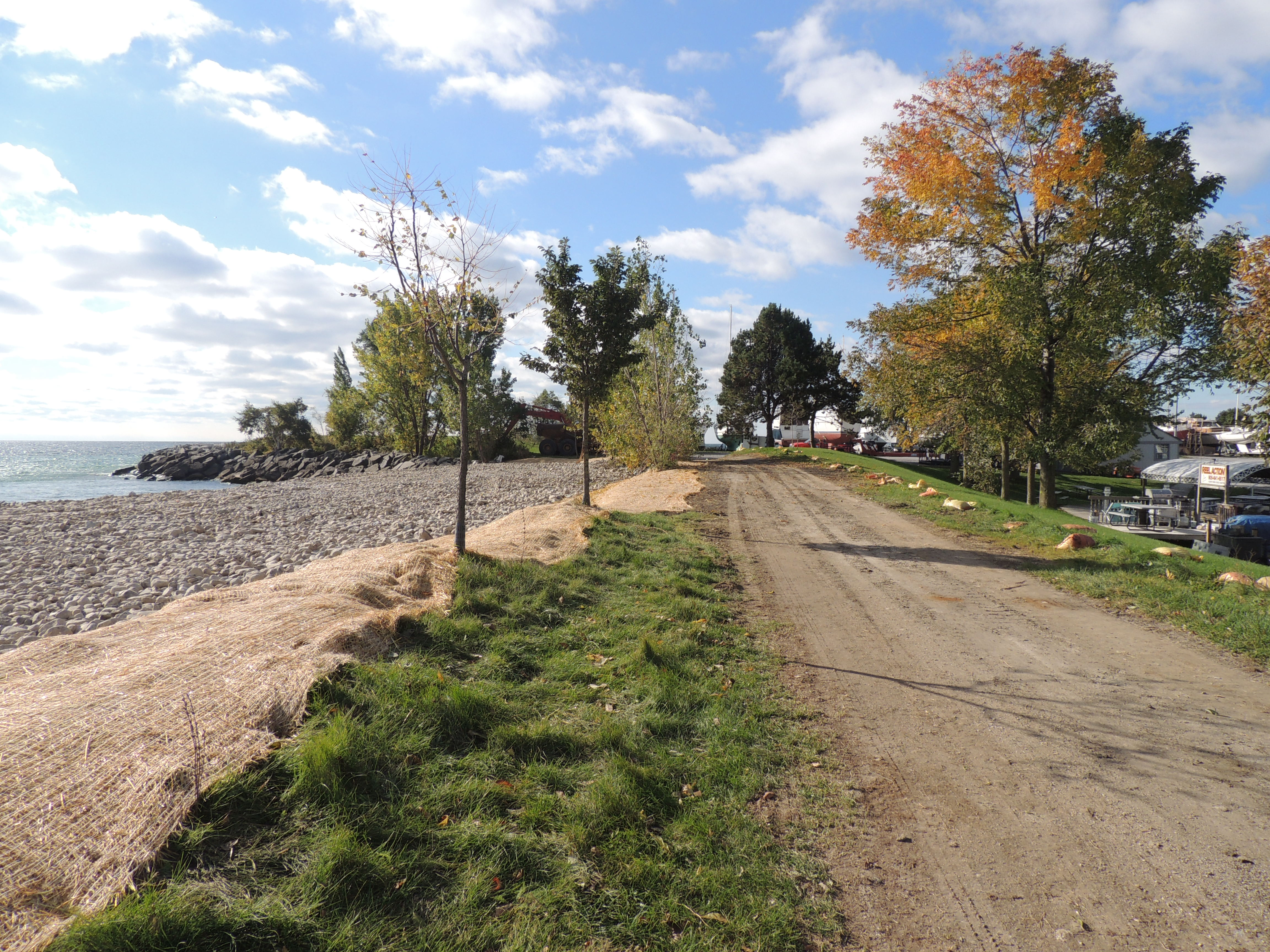 Open access road and newly-seeded area covered with straw matting. Source: TRCA, 2018.
