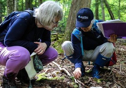 TRCA volunteers conduct terrestrial monitoring